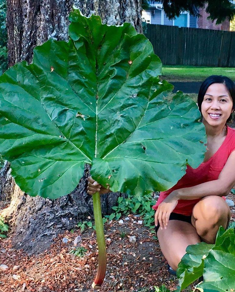 Bà mẹ 4 con dành cả thanh xuân để tạo lập khu vườn trồng cây ăn trái cùng đủ loại rau xanh - Ảnh 2.