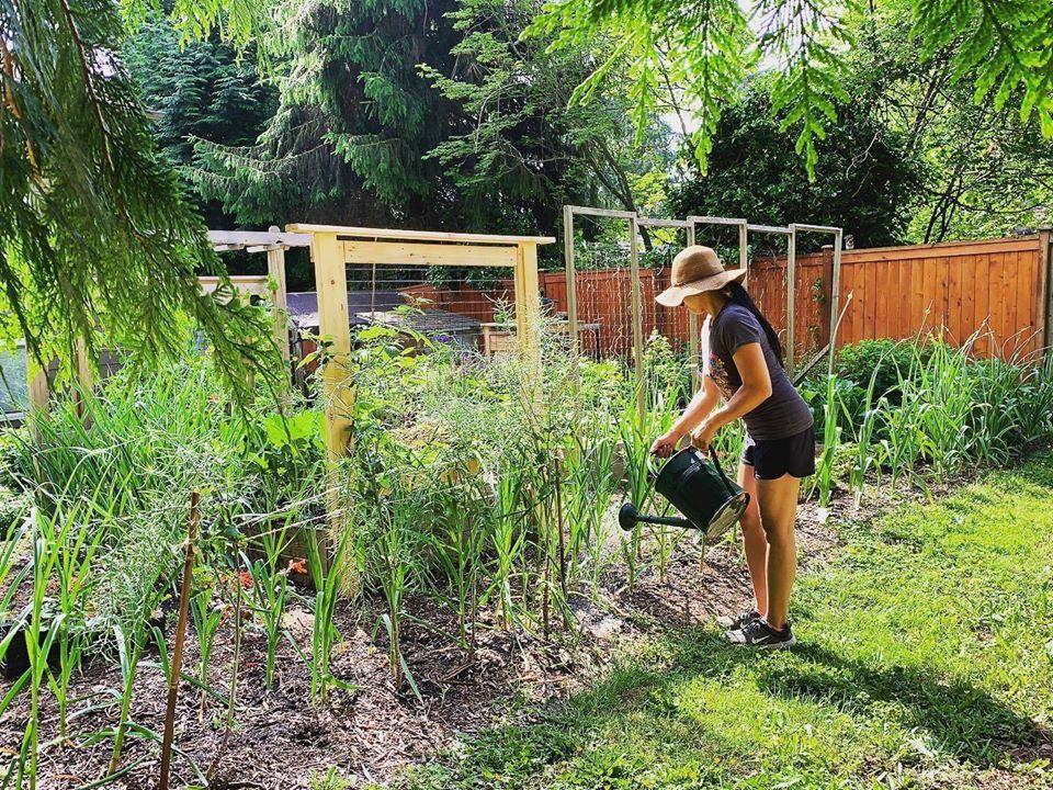 Bà mẹ 4 con dành cả thanh xuân để tạo lập khu vườn trồng cây ăn trái cùng đủ loại rau xanh - Ảnh 5.