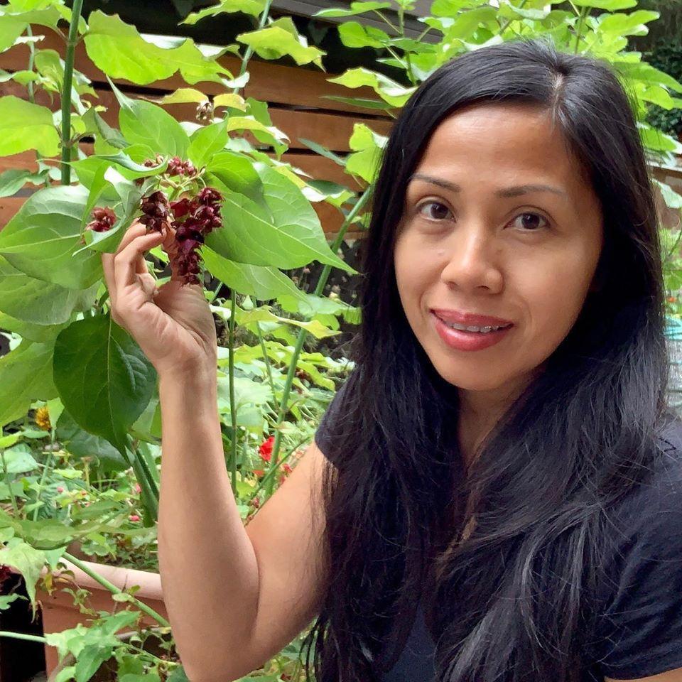 Bà mẹ 4 con dành cả thanh xuân để tạo lập khu vườn trồng cây ăn trái cùng đủ loại rau xanh - Ảnh 7.