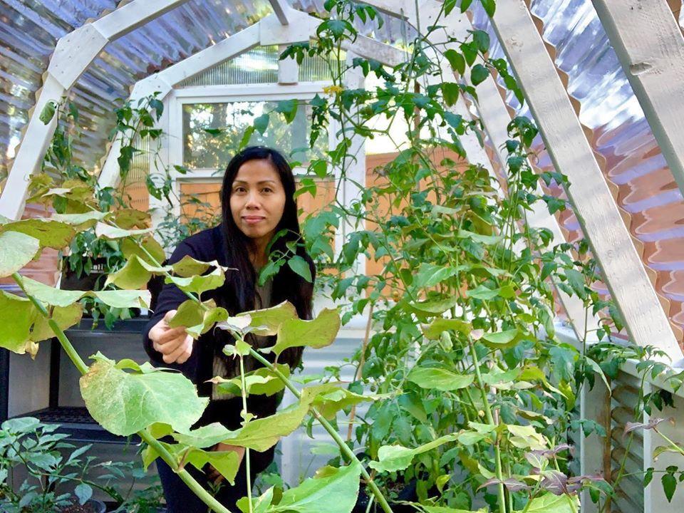 Bà mẹ 4 con dành cả thanh xuân để tạo lập khu vườn trồng cây ăn trái cùng đủ loại rau xanh - Ảnh 12.