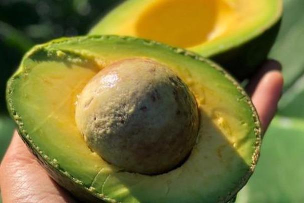 """Tử cung của phụ nữ rất cần """"tẩm bổ"""" bằng 7 thực phẩm này: Hãy ăn nhiều để tử cung không bị """"bẩn"""" và được nuôi dưỡng tốt hơn - Ảnh 5."""