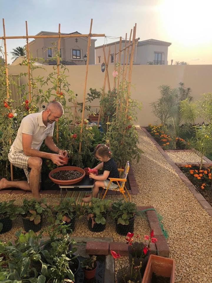 Vườn rau quả xanh um tươi tốt bố mẹ trồng giúp con gái nhỏ học nhiều điều về cuộc sống - Ảnh 8.