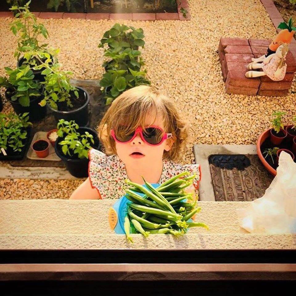 Vườn rau quả xanh um tươi tốt bố mẹ trồng giúp con gái nhỏ học nhiều điều về cuộc sống - Ảnh 5.