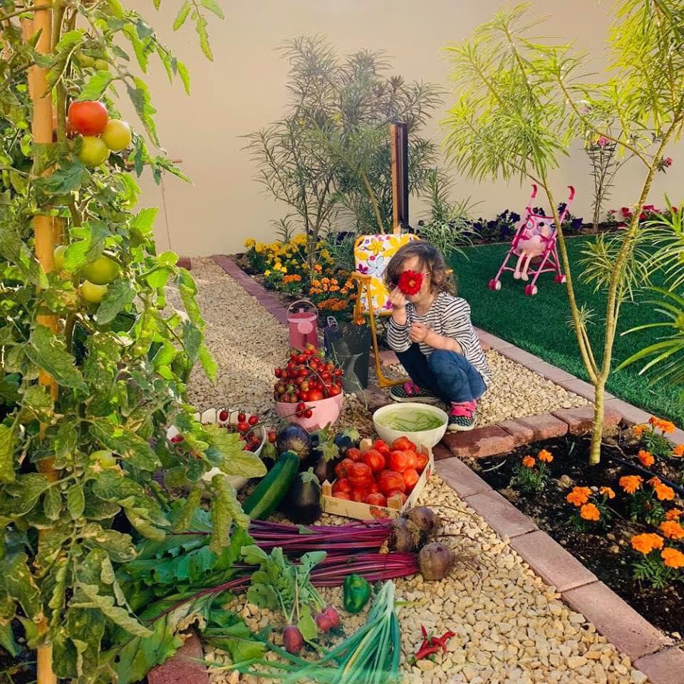 Vườn rau quả xanh um tươi tốt bố mẹ trồng giúp con gái nhỏ học nhiều điều về cuộc sống - Ảnh 16.