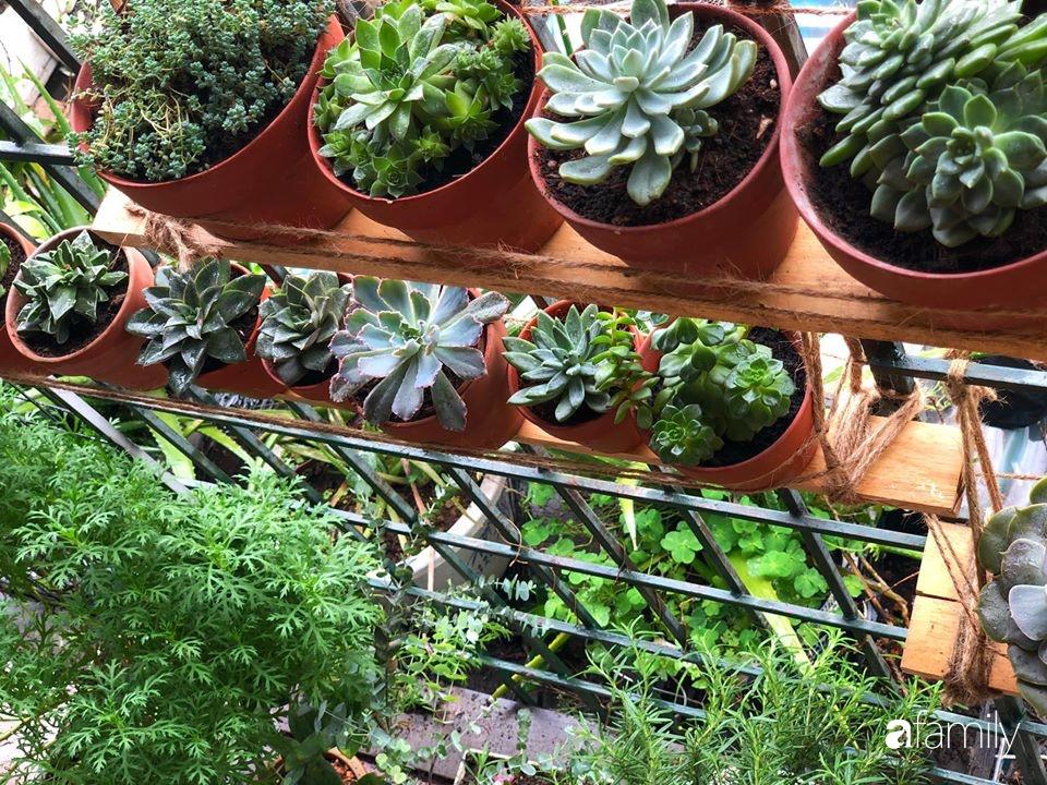 Cải tạo ban công tập thể chỉ 6m² thành vườn cây cùng góc thư giãn tuyệt đẹp cho gia đình ở Hà Nội - Ảnh 4.