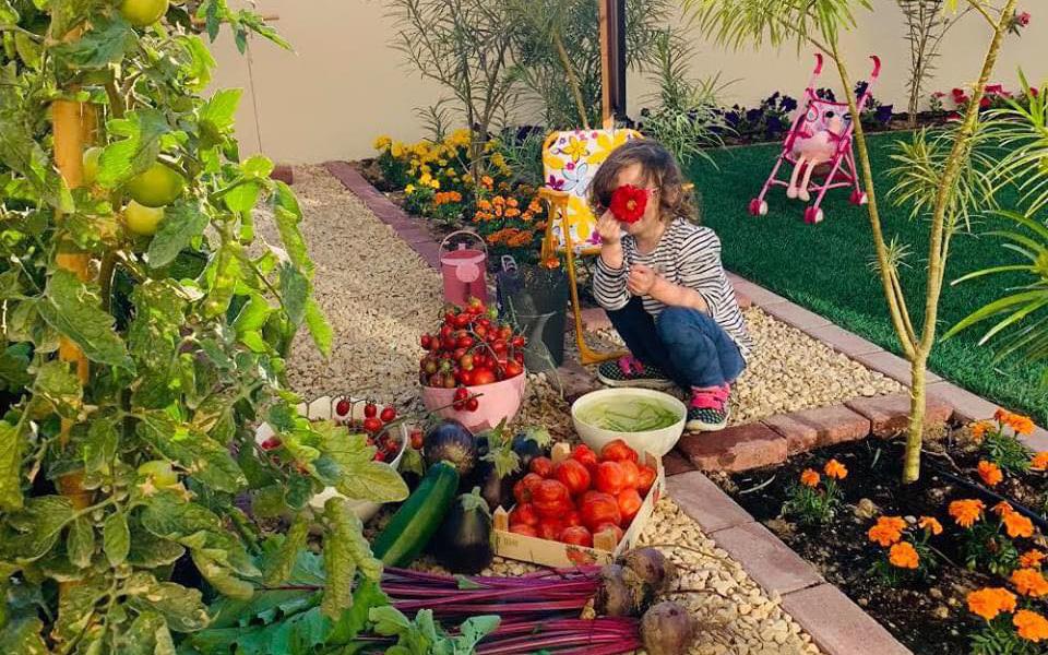 Vườn rau quả xanh um tươi tốt bố mẹ trồng để giúp con gái nhỏ học nhiều điều về cuộc sống