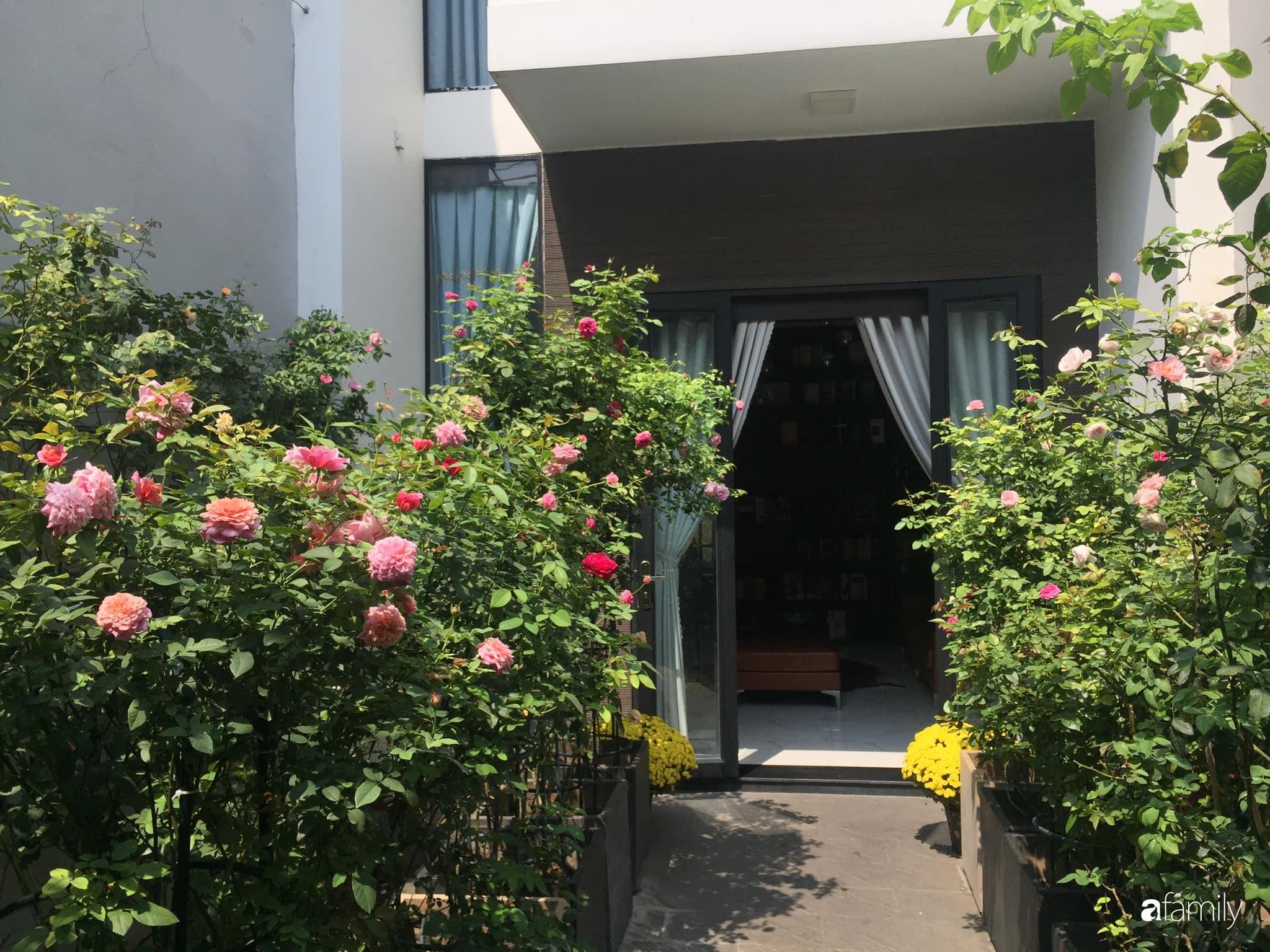 Lối nhỏ vào nhà níu chân bởi những gốc hồng xanh mướt lá rực rỡ sắc hoa ở Sài Gòn - Ảnh 12.
