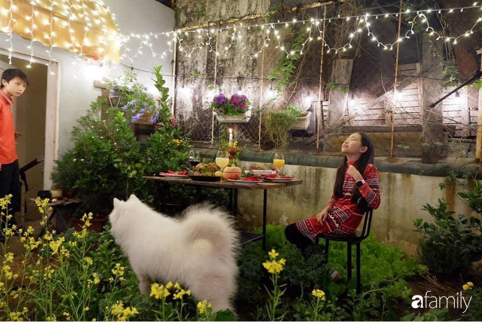 """Nghe kinh nghiệm trồng """"vườn treo Babylon"""" ngay giữa lòng thành phố đã 10 năm vẫn tốt xanh um của bà  Hà Nội - Ảnh 5."""