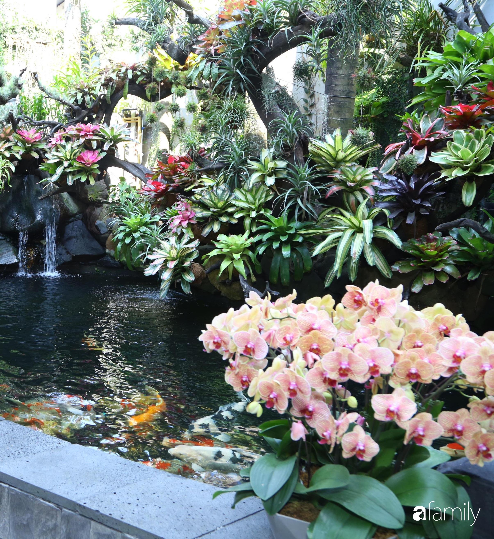 Ngất ngây ngắm nhìn khu vườn toàn những cây độc lạ của người phụ nữ yêu thiên nhiên ở Cần Thơ - Ảnh 6.