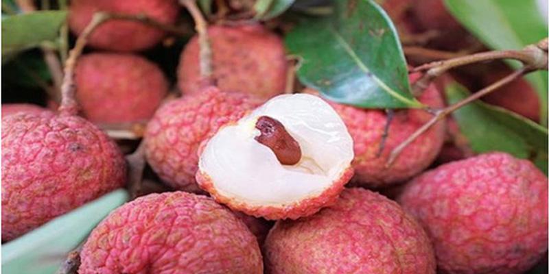 """7 loại quả """"ngon đã miệng"""", mùa hè càng nên ăn nhiều để tăng cường sức đề kháng và phòng ngừa bệnh tật những ngày nắng nóng  - Ảnh 7."""