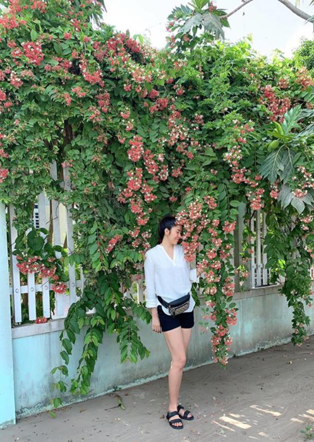 Lê Phương đứng tạo dáng trước dàn hoa đẹp nhà trồng được.