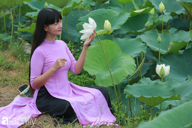Chuyện ít biết về người đàn ông mang nét đẹp xứ Huế về vùng ngoại thành Hà Nội nhân giống, làm nên đầm sen trắng tinh khôi khiến vạn người mê - Ảnh 11.