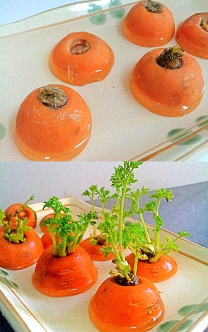 Tự trồng vườn rau gia vị nơi góc bếp, tại sao không nhỉ? - ảnh 11