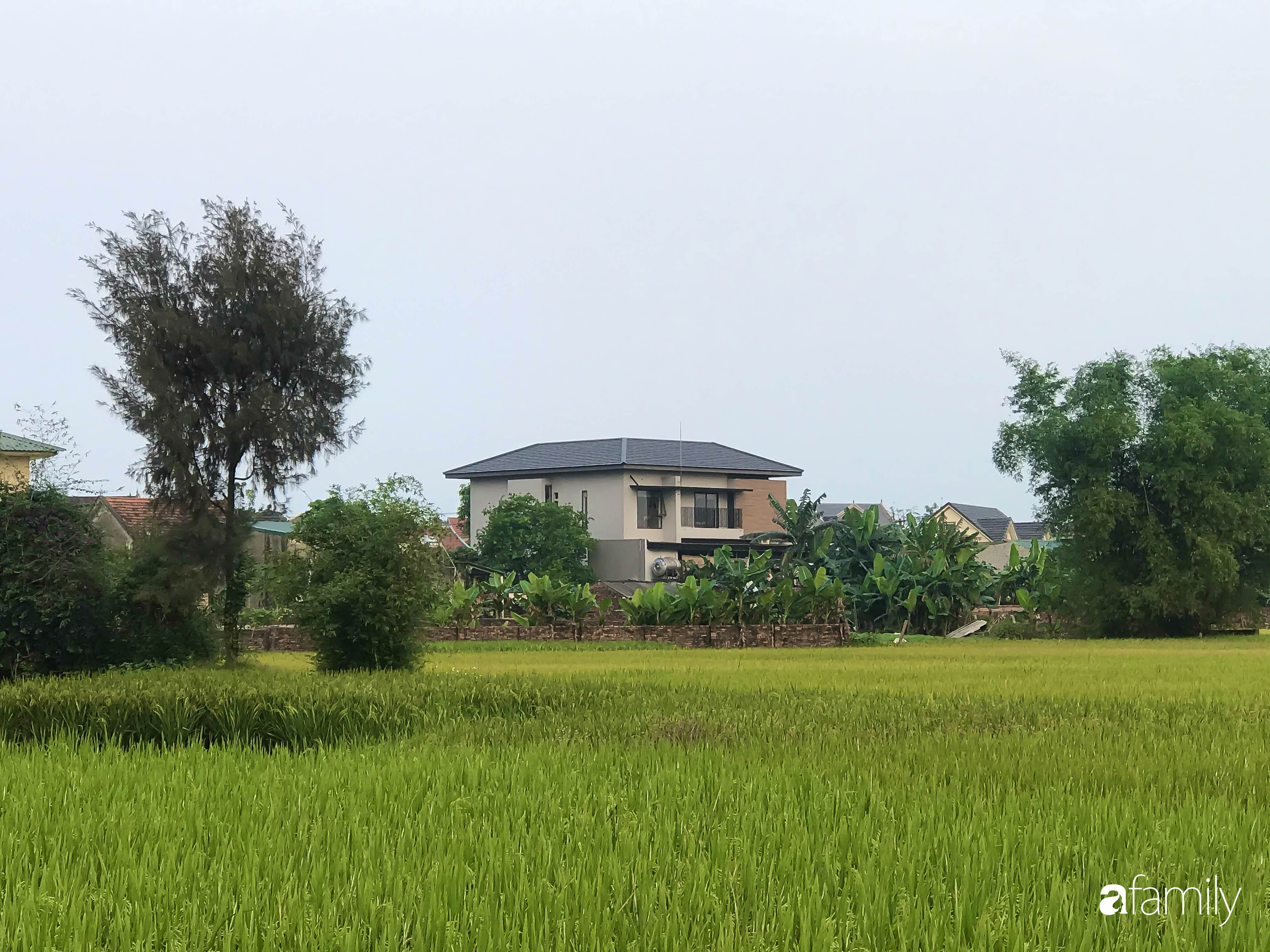 Con trai là KTS xây nhà 2 tầng nhìn thẳng ra cánh đồng lúa với thiết kế tiện dụng cho bố mẹ già ở Hà Tĩnh - Ảnh 2.
