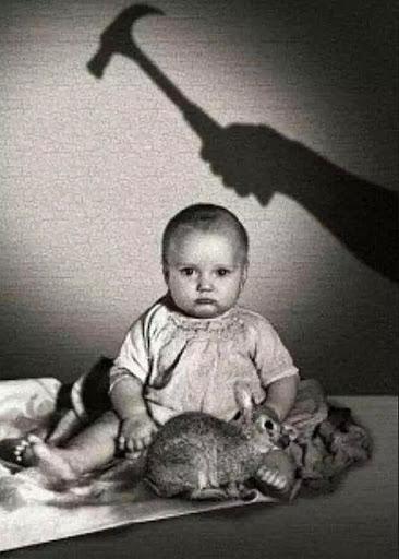 Albert bé nhỏ: Thí nghiệm tâm lý phi đạo đức thực hiện trên đứa trẻ 8 tháng tuổi gây ra nhiều tranh cãi nhất trong lịch sử nghiên cứu  - Ảnh 2.