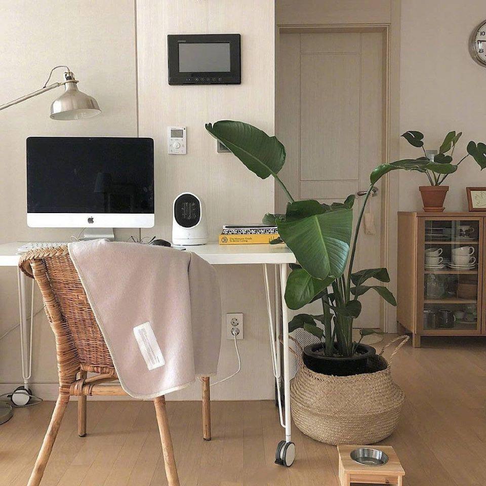Làm mới ngôi nhà với phong cách đồng quê, thân thiện với môi trường bằng những đồ decor từ cói - Ảnh 6.