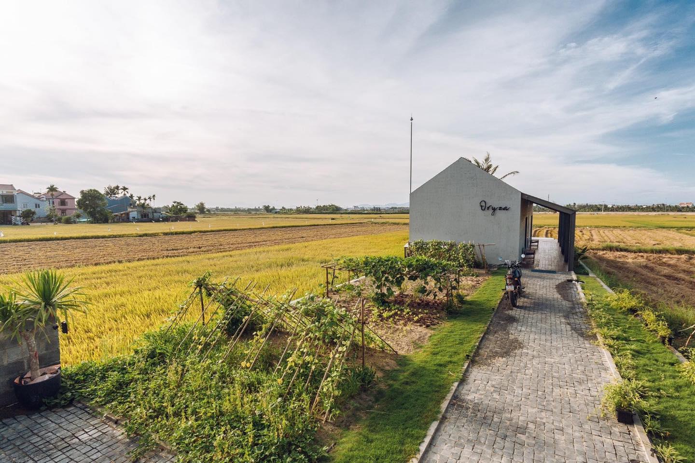 Khi có mảnh đất ở quê, đừng bỏ lỡ cơ hội xây ngôi nhà view cánh đồng lúa đắt giá như thế này - Ảnh 1.