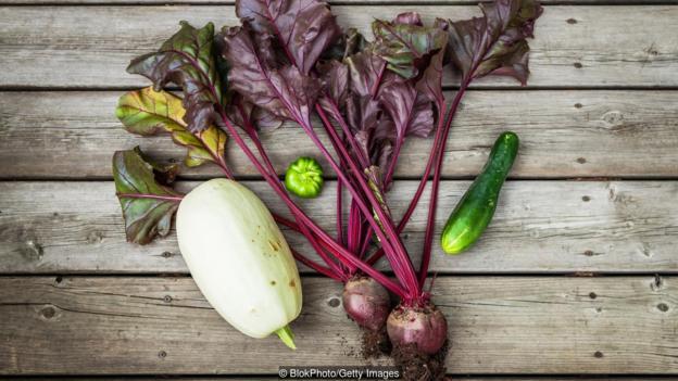 Anh quốc: Những khu vườn tự trồng tại nhà giữa đại dịch COVID-19 - Ảnh 3.