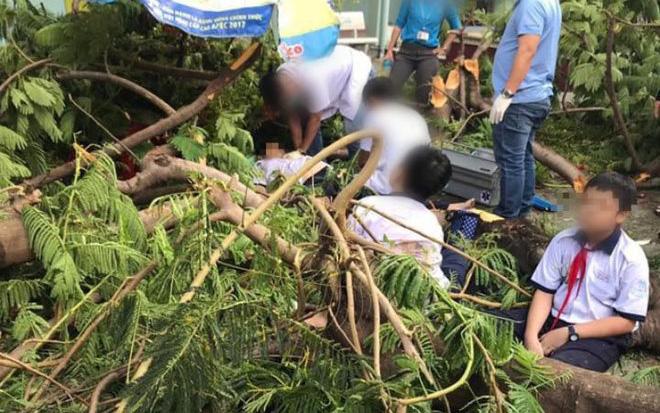 Hiện trường ngổn ngang vụ cây phượng bật gốc đè trúng 13 học sinh, 1 em tử vong tại bệnh viện