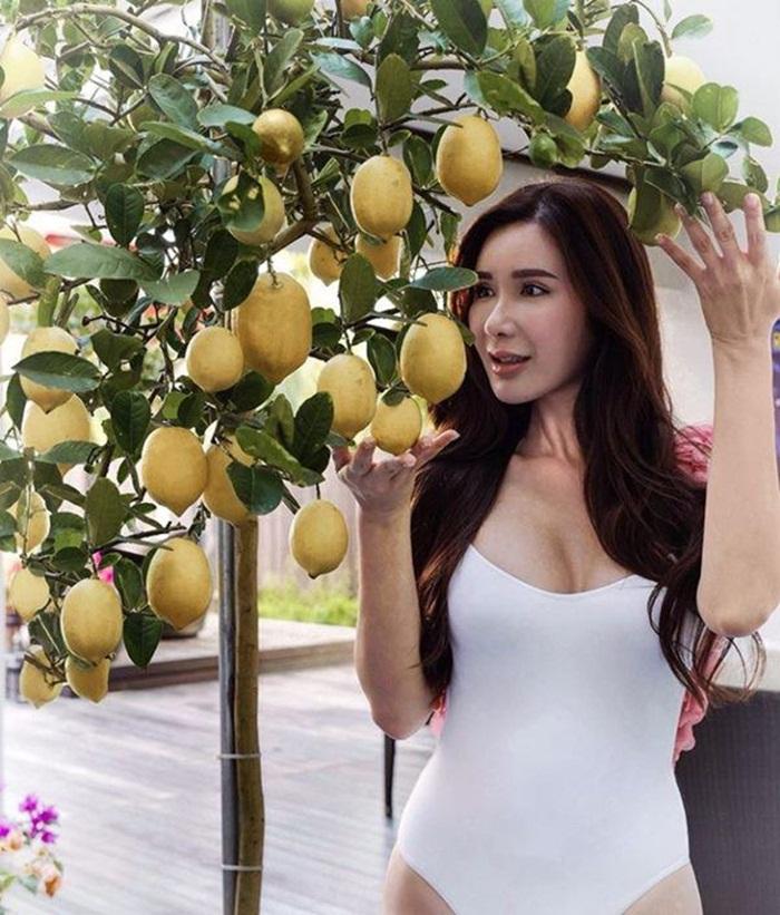 Hot mom xinh đẹp nhận trợ cấp 10 tỷ đồng/ tháng từ chồng vẫn tự tay trồng rau quả hữu cơ - Ảnh 4.