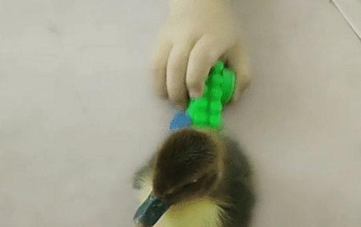 Cậu bé đi học mẫu giáo nhưng lại mang theo món đồ chơi mà khi mang ra chơi cả cô giáo và các bạn cùng ngỡ ngàng - Ảnh 4.