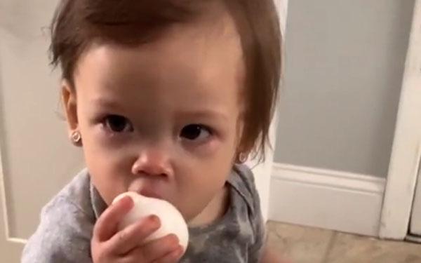 Thử nghiệm đưa cho con 1 một quả trứng, kết quả thu...