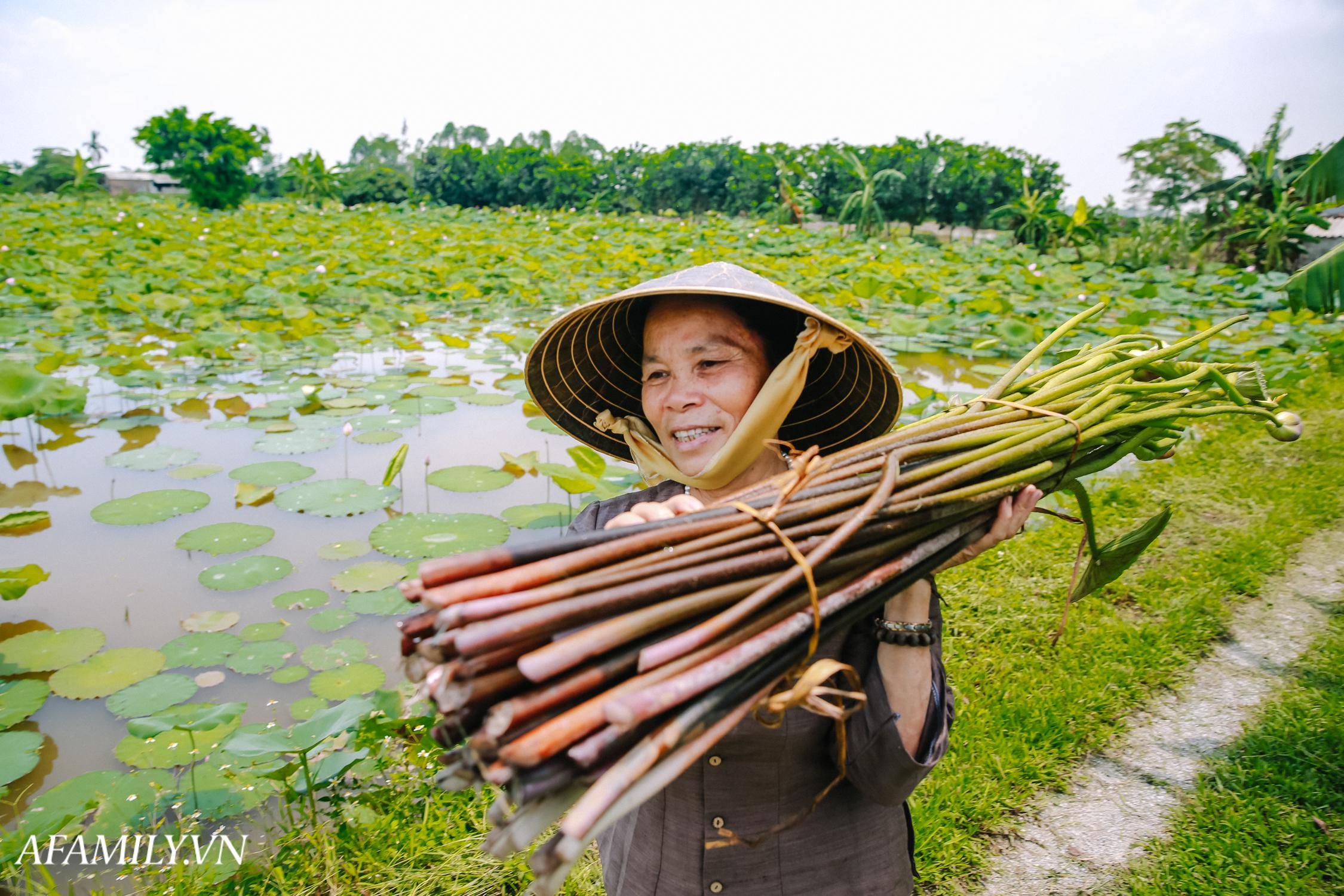 """Người phụ nữ chân quê ngoại thành Hà Nội với biệt tài """"bắt sen nhả tơ"""", làm nên chiếc khăn giá chẳng kém gì hàng hiệu nổi tiếng - Ảnh 3."""