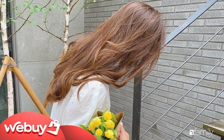 Theo các BTV làm đẹp, đây là 5 loại thuốc nhuộm tóc bình dân chất lượng, giúp bạn F5 mái tóc vừa xinh còn vừa tôn da