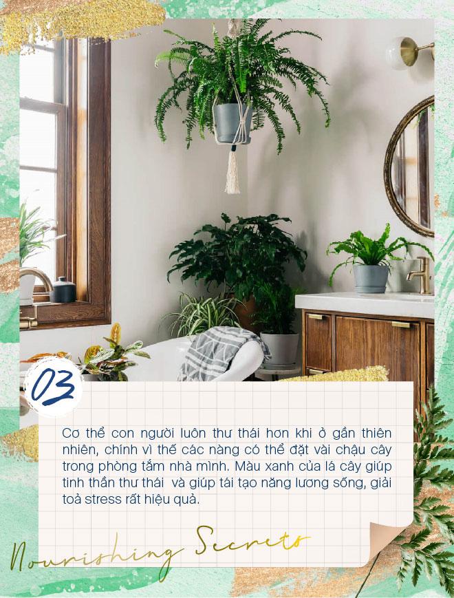 Học lỏm các tips đơn giản mà hiệu quả để biến phòng tắm thành spa tại nhà - Ảnh 3.