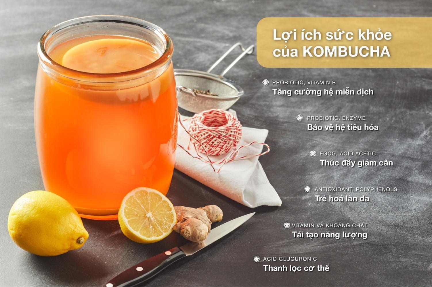 """Bạn biết gì về trà """"bất tử"""" Kombucha? - Ảnh 3."""