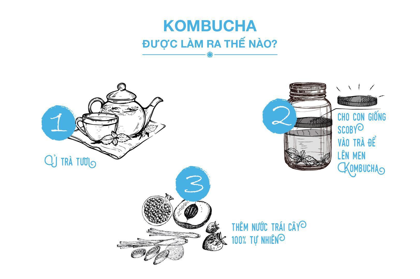 """Bạn biết gì về trà """"bất tử"""" Kombucha? - Ảnh 5."""