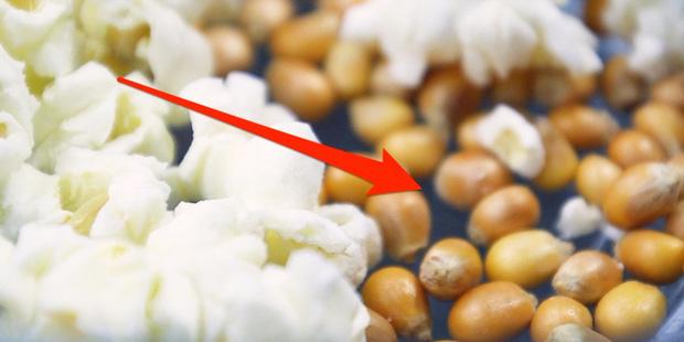 Ăn bỏng ngô thì thích mê nhưng đến 99,9% người không biết vì sao có những hạt ngô không thể nổ - Ảnh 1.