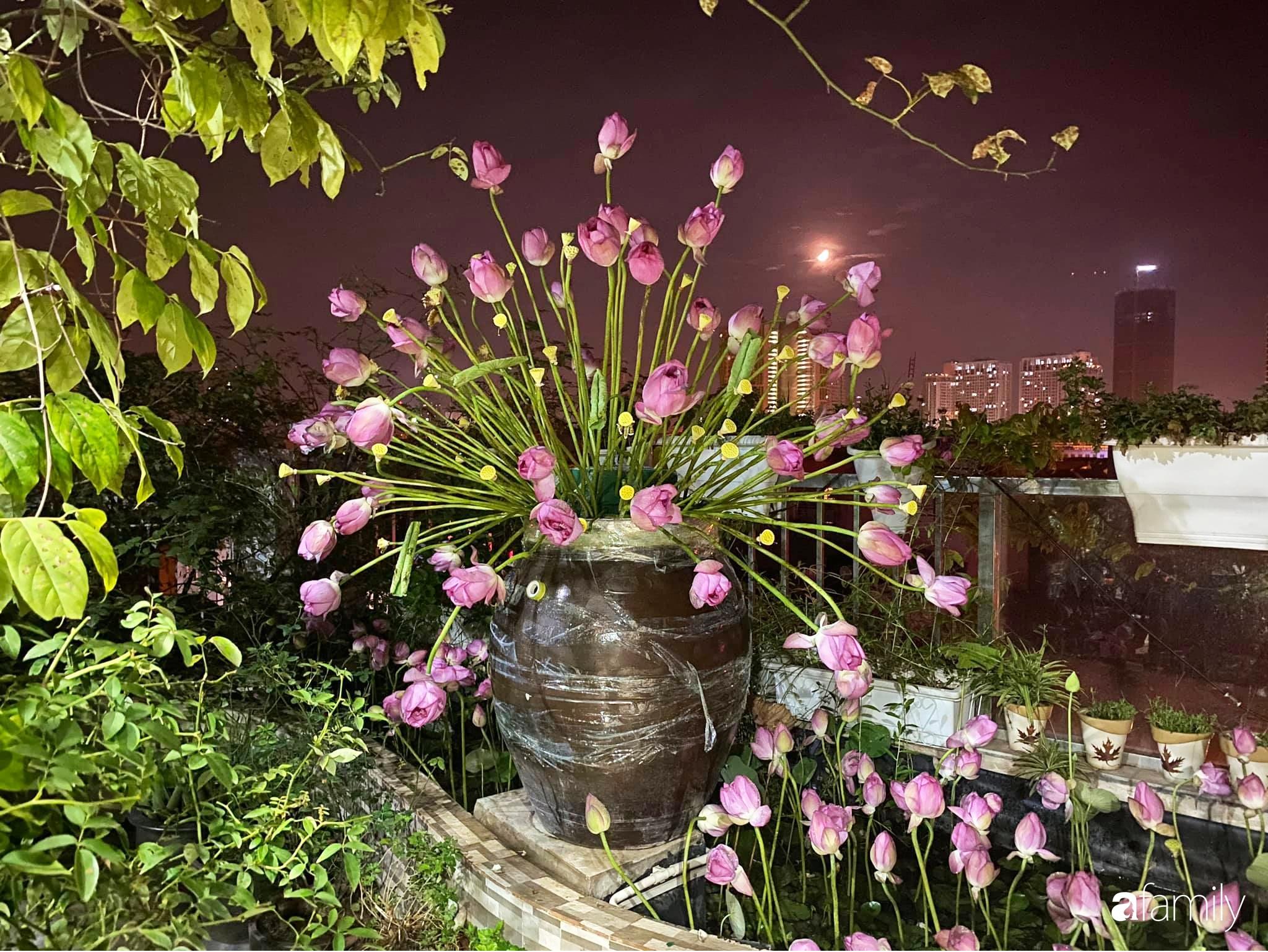 Bà mẹ Hà Nội tỉ mẩn dành 4 tiếng để tự cắm 1000 bông sen mang sắc màu mùa hạ lên sân thượng 200m² - Ảnh 13.