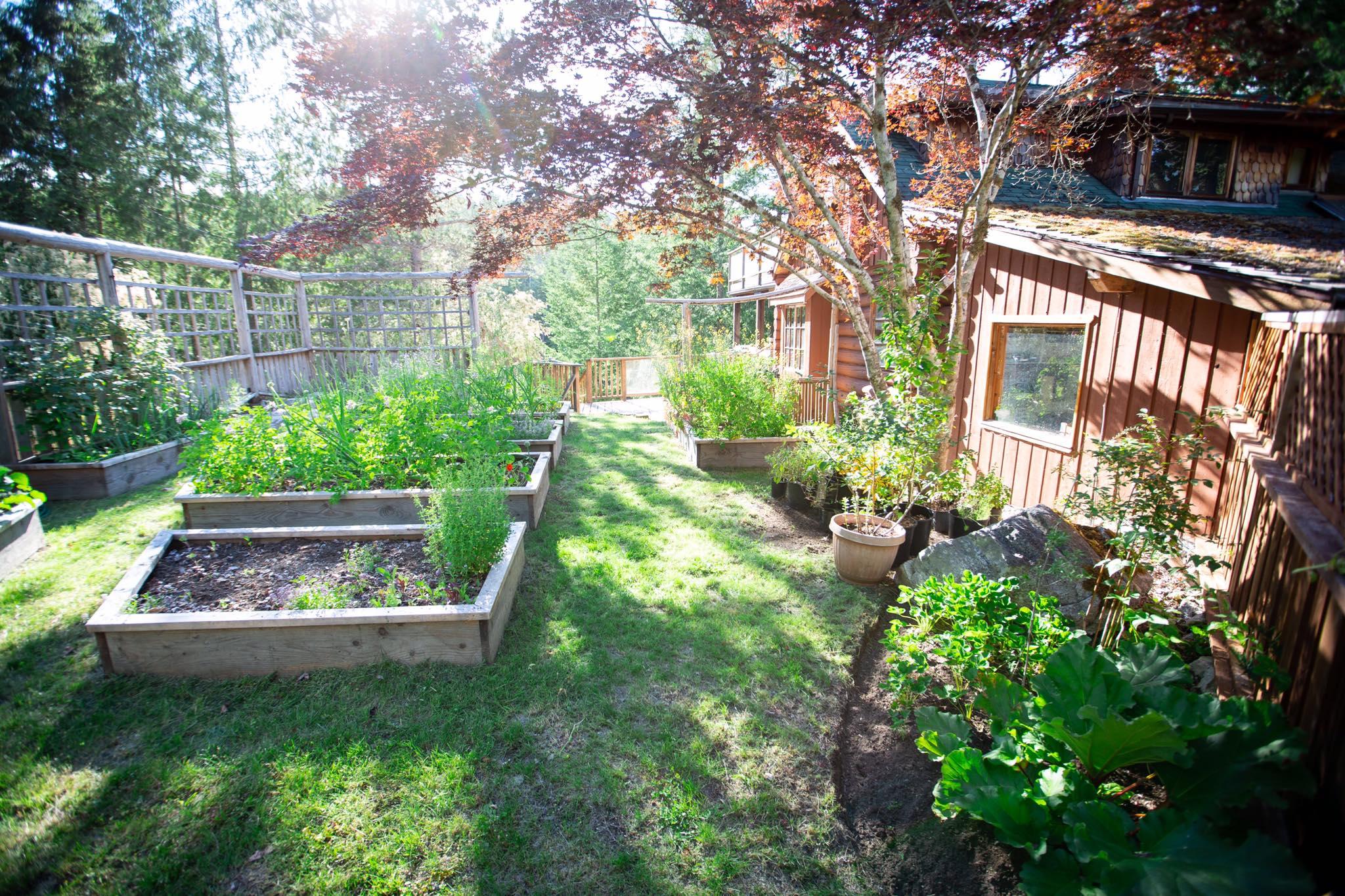 Cô gái xinh đẹp luôn tràn ngập năng lượng hạnh phúc khi trồng cả khu vườn toàn rau quả sạch - Ảnh 10.