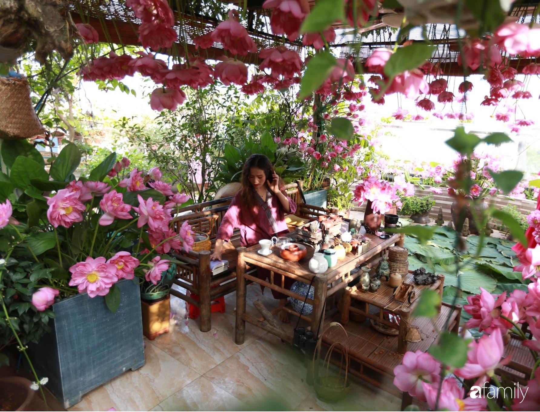 Bà mẹ Hà Nội tỉ mẩn dành 4 tiếng để tự cắm 1000 bông sen mang sắc màu mùa hạ lên sân thượng 200m² - Ảnh 5.