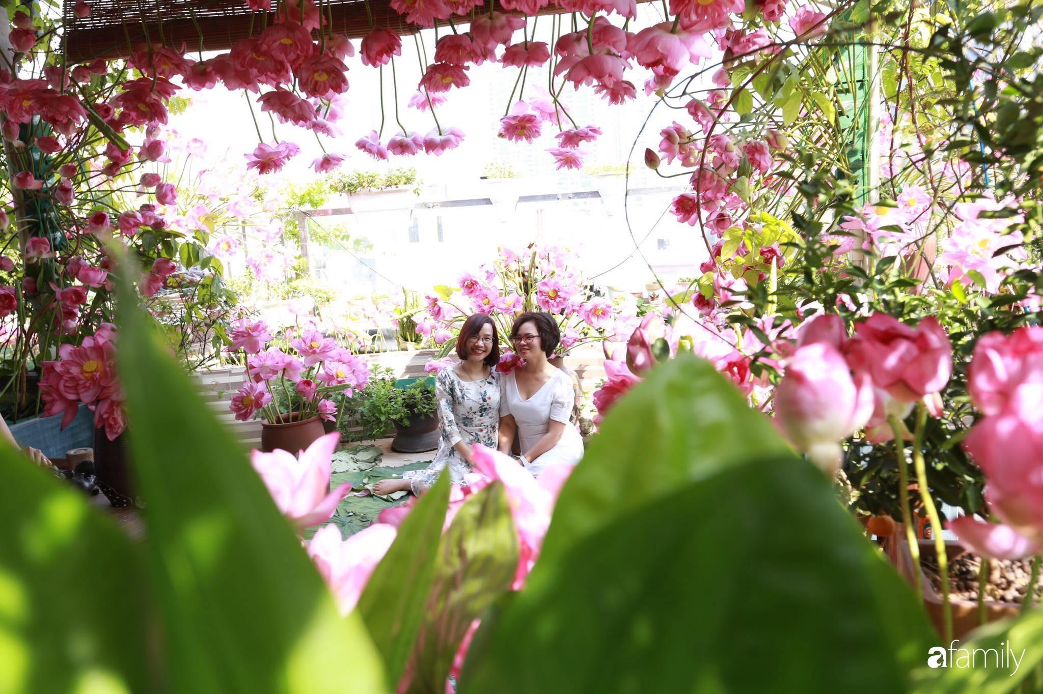 Bà mẹ Hà Nội tỉ mẩn dành 4 tiếng để tự cắm 1000 bông sen mang sắc màu mùa hạ lên sân thượng 200m² - Ảnh 14.