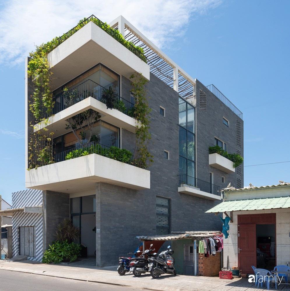 Ngôi nhà 3 tầng view biển Vũng Tàu với thiết kế mang ánh sáng và cây xanh đến từng góc nhỏ - Ảnh 1.