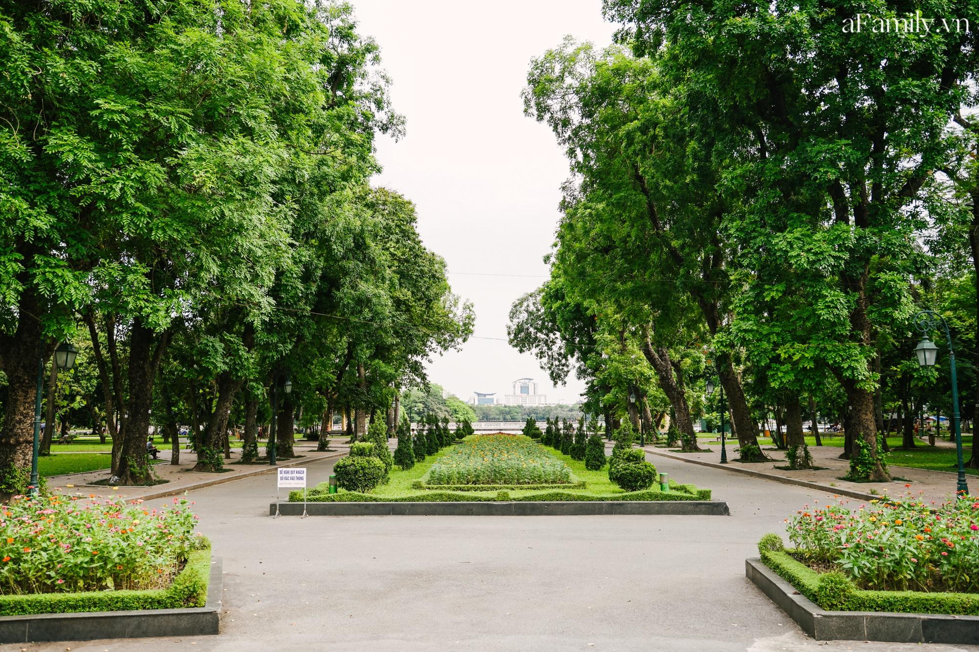 4000 đồng cho tour du lịch hè độc đáo ngay giữa thủ đô ở một công viên lâu đời vừa có đảo, vừa có rừng cây xanh, hồ cá trong lành - Ảnh 2.