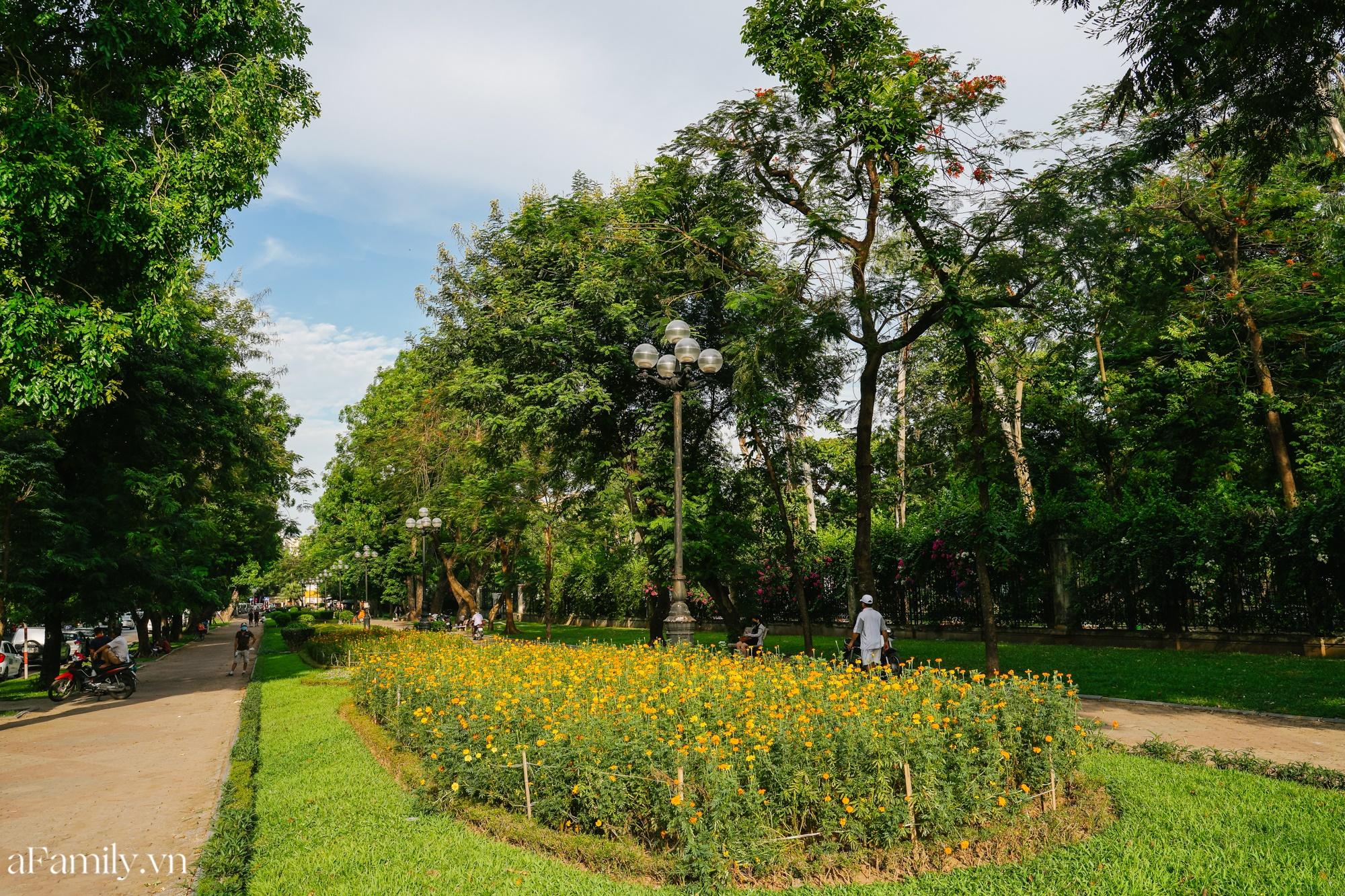 4000 đồng cho tour du lịch hè độc đáo ngay giữa thủ đô ở một công viên lâu đời vừa có đảo, vừa có rừng cây xanh, hồ cá trong lành - Ảnh 3.
