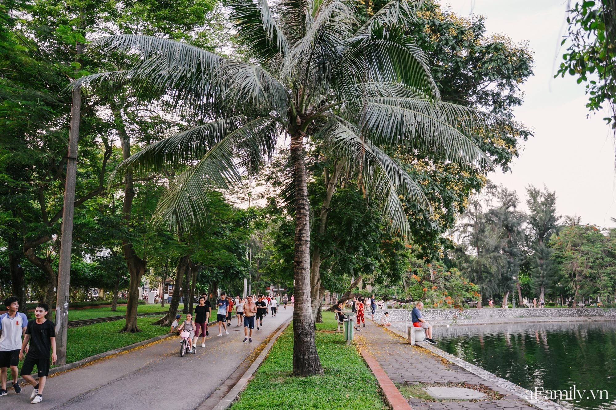 4000 đồng cho tour du lịch hè độc đáo ngay giữa thủ đô ở một công viên lâu đời vừa có đảo, vừa có rừng cây xanh, hồ cá trong lành - Ảnh 5.