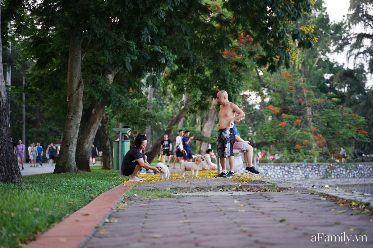 4000 đồng cho tour du lịch hè độc đáo ngay giữa thủ đô ở một công viên lâu đời vừa có đảo, vừa có rừng cây xanh, hồ cá trong lành - Ảnh 31.