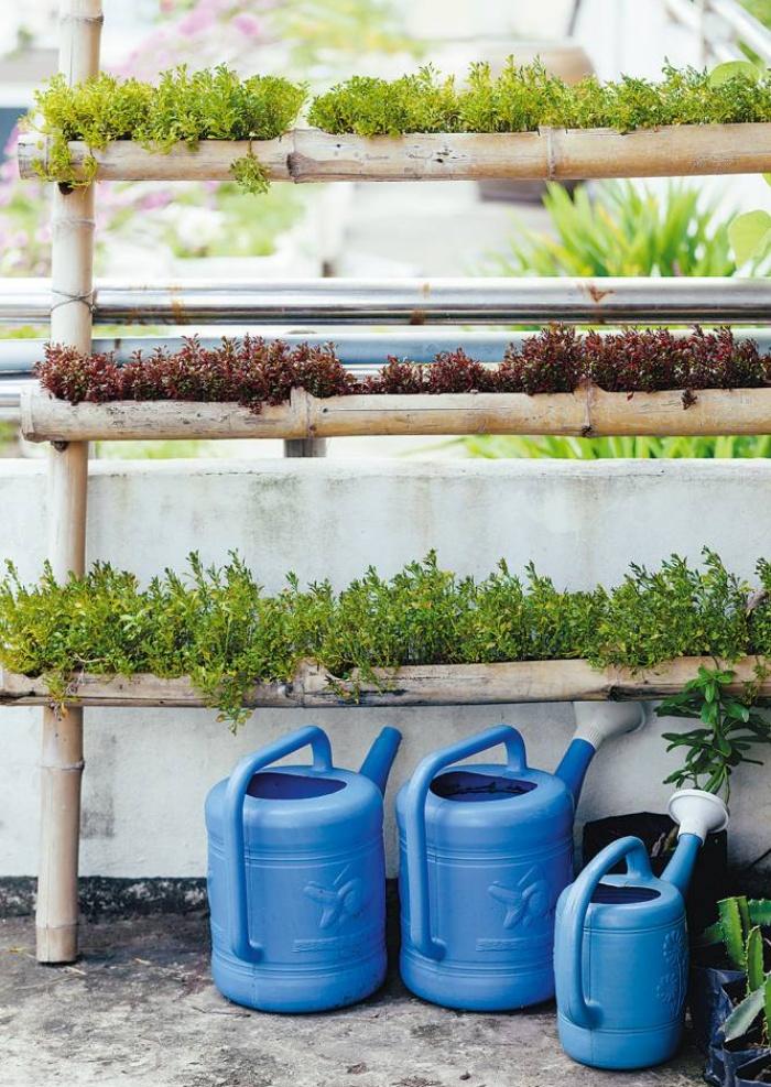 Những ý tưởng thiết thực tạo vườn rau xanh sạch trong nhà phố - Ảnh 3.