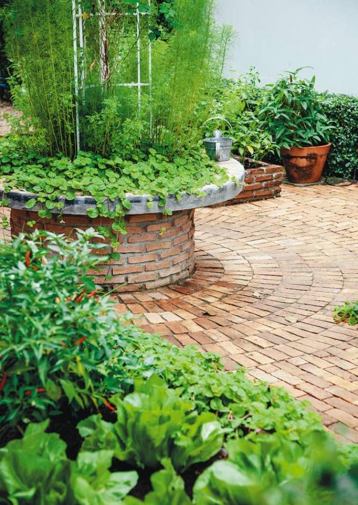 Những ý tưởng thiết thực tạo vườn rau xanh sạch trong nhà phố - Ảnh 2.