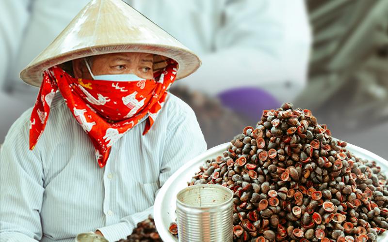 Mâm ốc dừa xào cay ở Sài Gòn khiến nhiều người tò mò suốt 60 năm qua