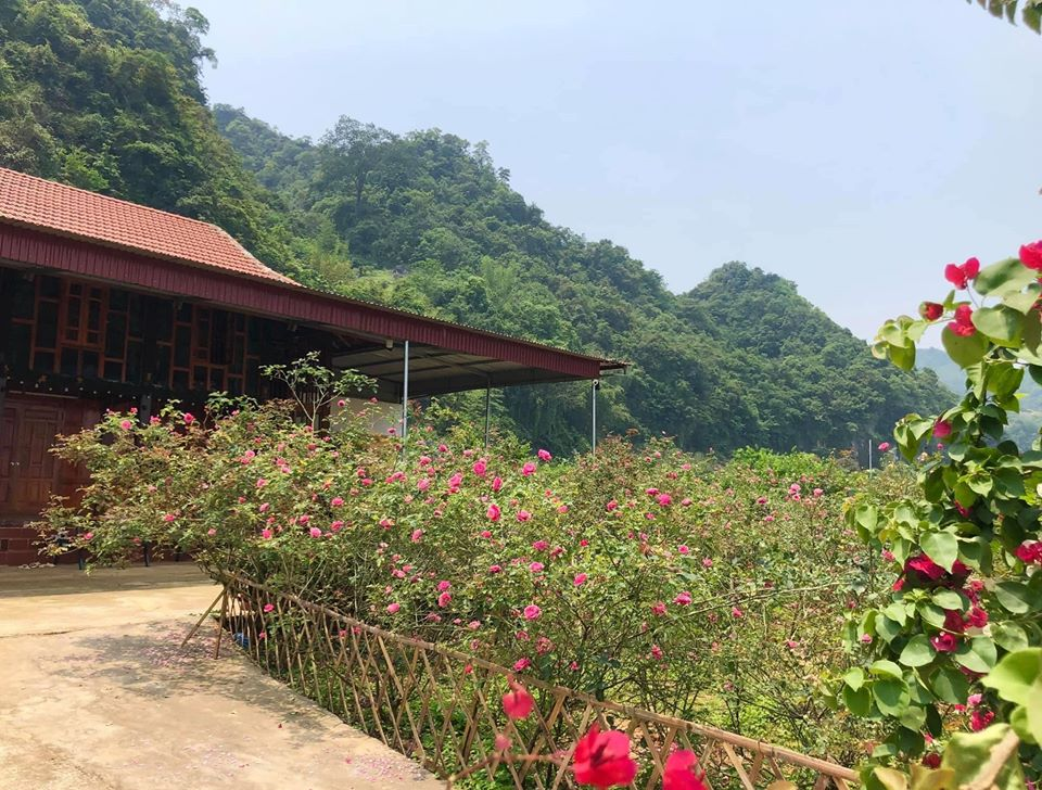 Quá áp lực và mệt mỏi với cuộc sống ở Hà Nội, vợ chồng trẻ quyết bỏ công việc ổn định, mang 200 triệu lên bản Áng Mộc Châu mua đất, xây nhà, làm vườn sống an yên - Ảnh 2.