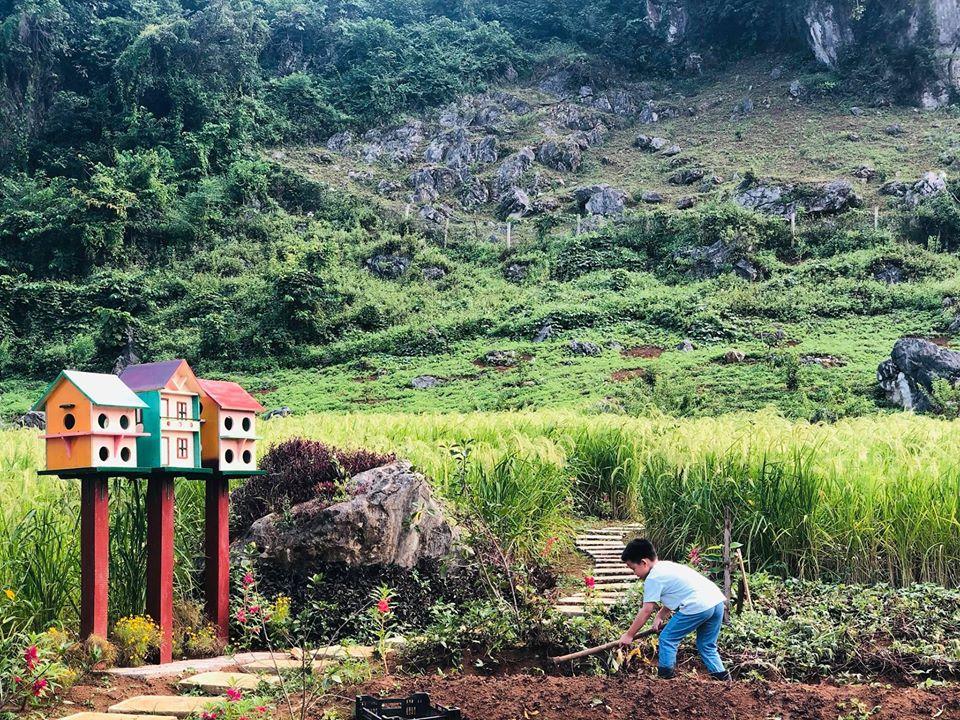 Quá áp lực và mệt mỏi với cuộc sống ở Hà Nội, vợ chồng trẻ quyết bỏ công việc ổn định, mang 200 triệu lên bản Áng Mộc Châu mua đất, xây nhà, làm vườn sống an yên - Ảnh 27.