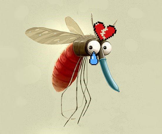 Mỹ chống lại loài muỗi bằng cách thả 750 triệu con muỗi ra môi trường - Ảnh 2.