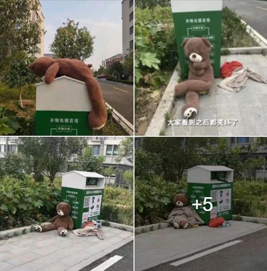 Bị bỏ rơi vạ vật ở thùng rác, gấu bông cô đơn bỗng trở nên sang chảnh hơn hẳn nhờ lòng tốt của người đi đường! - Ảnh 1.