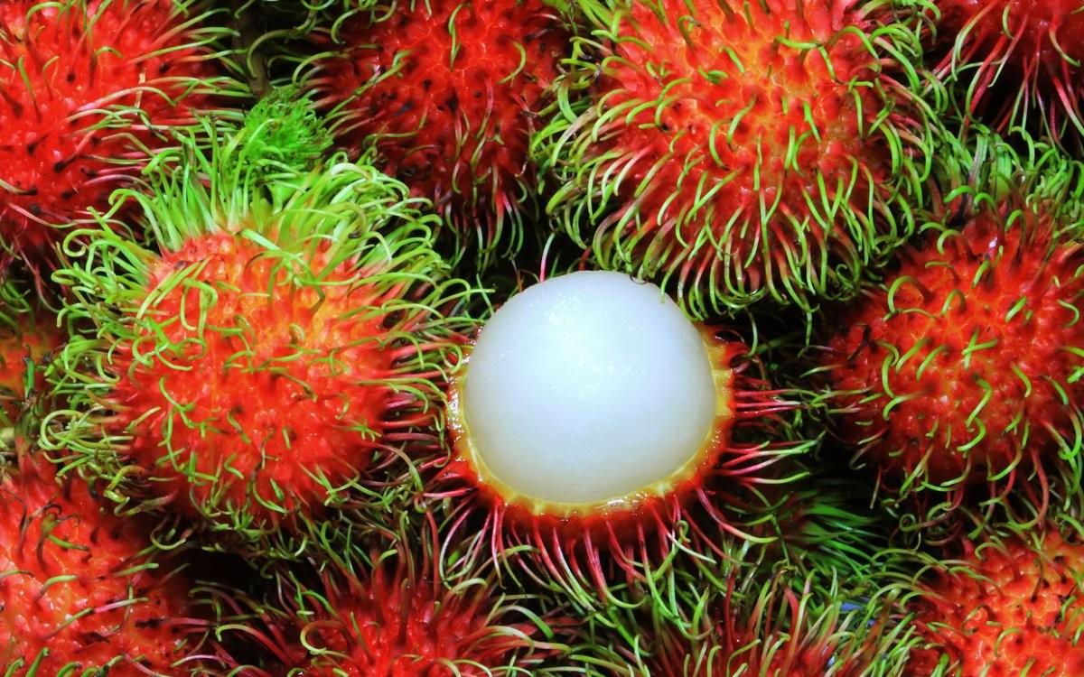 """Đừng ăn quá nhiều 7 loại quả này vào mùa hè vì như vậy chẳng khác nào """"tự đầu độc"""" cơ thể - Ảnh 4."""
