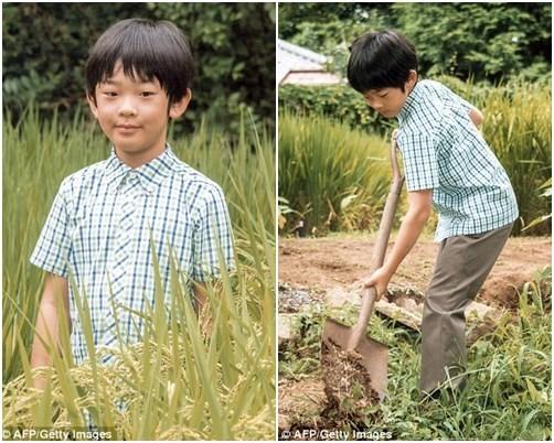 Suýt thay đổi luật vì không có người kế vị nhưng đến khi hoàng tử chào đời, Hoàng gia Nhật lập tức làm điều lạ lùng này - Ảnh 6.